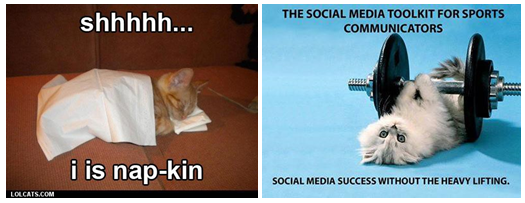 a couple of examples of image macros involving cats