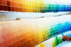 A wall of paint color swatches.